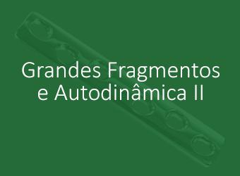 Grandes Fragmentos e Autodinâmica II