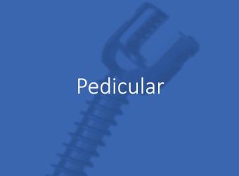 Pedicular