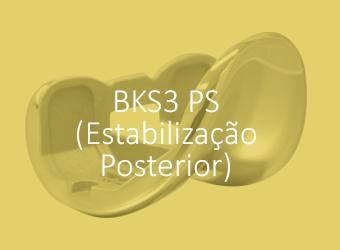 BKS3 PS (Estabilização Posterior)